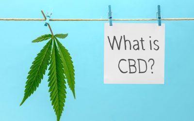 Cannabinol (CBN) – What is it?